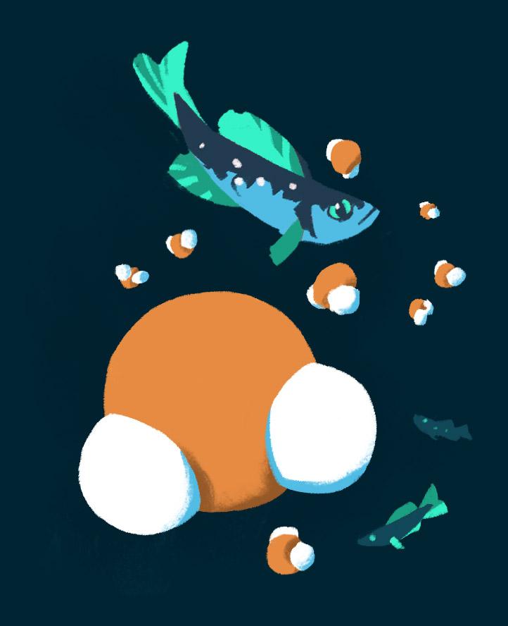 Fische und Wassermoleküle