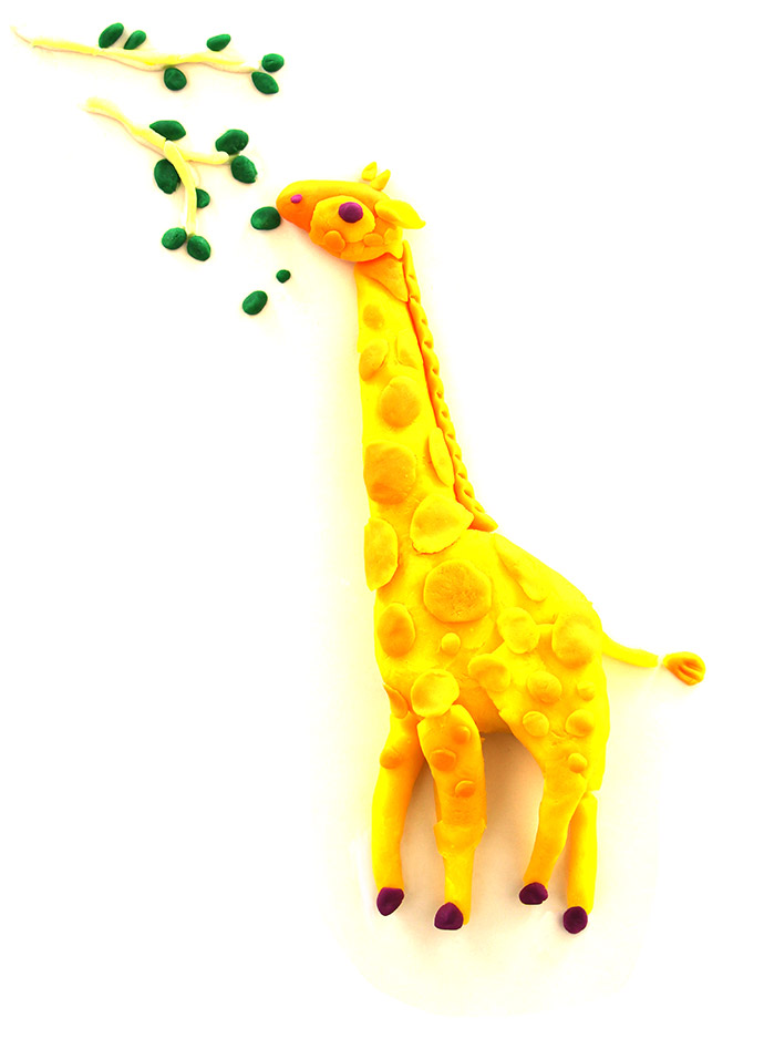 evolution_giraffe